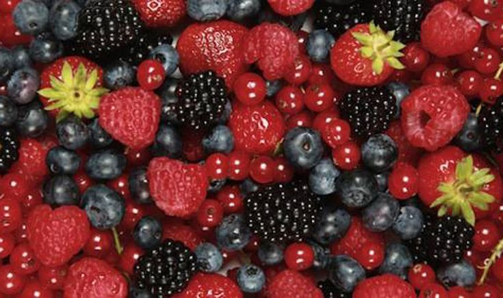 Foods To Naturally Increase Blood Flow in Body