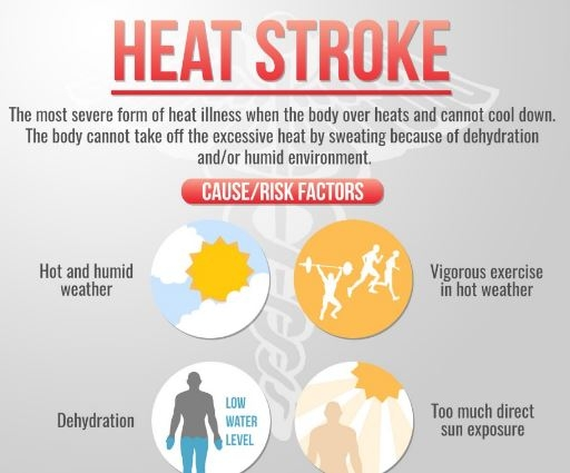 About Heat Strokes
